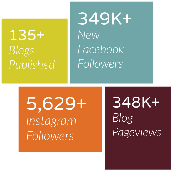135+ blogs published; 348K+ blog pageviews; 349K+ new Facebook followers; 5,629+ IG followers